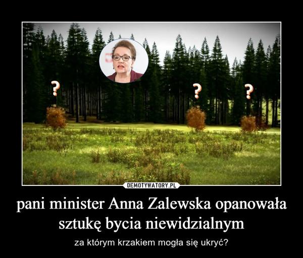 pani minister Anna Zalewska opanowała sztukę bycia niewidzialnym – za którym krzakiem mogła się ukryć?