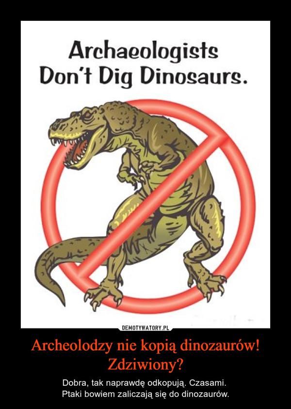Archeolodzy nie kopią dinozaurów!Zdziwiony? – Dobra, tak naprawdę odkopują. Czasami. Ptaki bowiem zaliczają się do dinozaurów.
