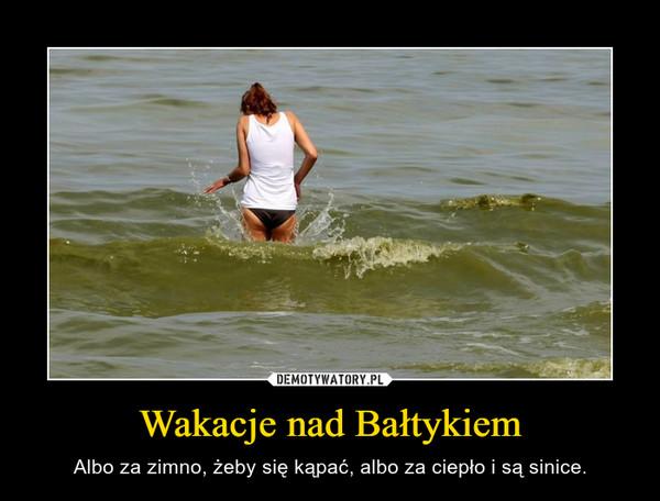 Wakacje nad Bałtykiem – Albo za zimno, żeby się kąpać, albo za ciepło i są sinice.