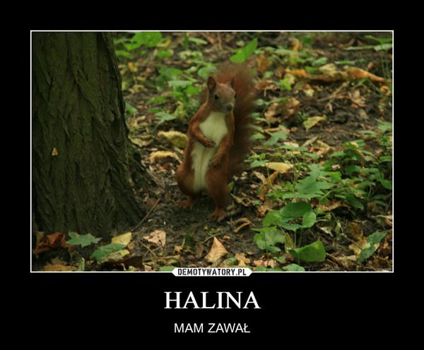 HALINA – MAM ZAWAŁ