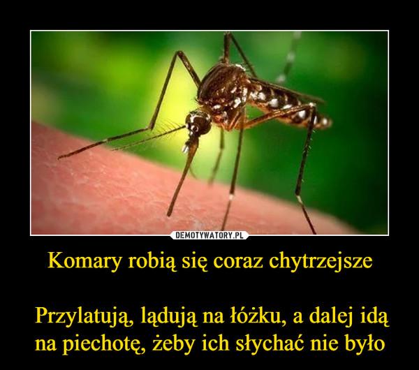 Komary robią się coraz chytrzejsze Przylatują, lądują na łóżku, a dalej idą na piechotę, żeby ich słychać nie było –