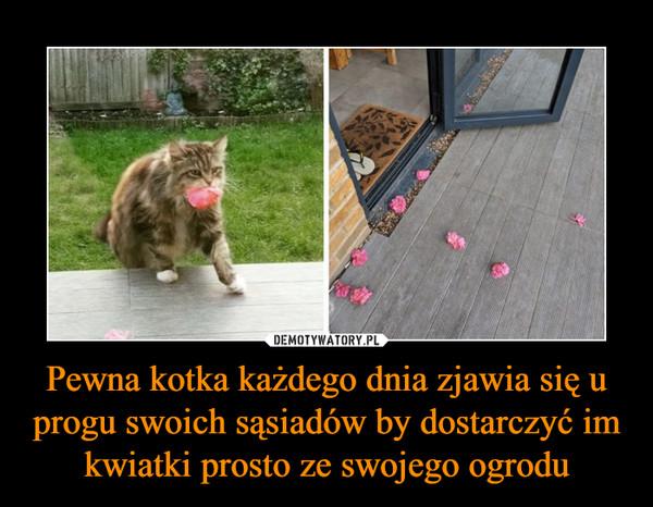 Pewna kotka każdego dnia zjawia się u progu swoich sąsiadów by dostarczyć im kwiatki prosto ze swojego ogrodu –