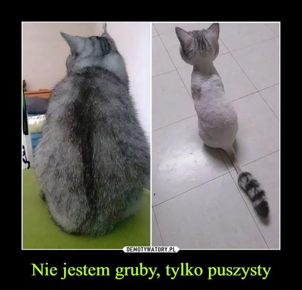 Nie jestem gruby, tylko puszysty –