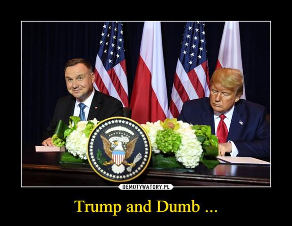 Trump and Dumb ... –