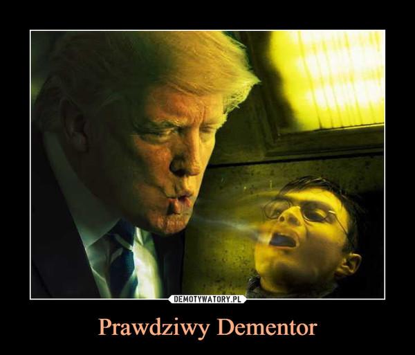 Prawdziwy Dementor –