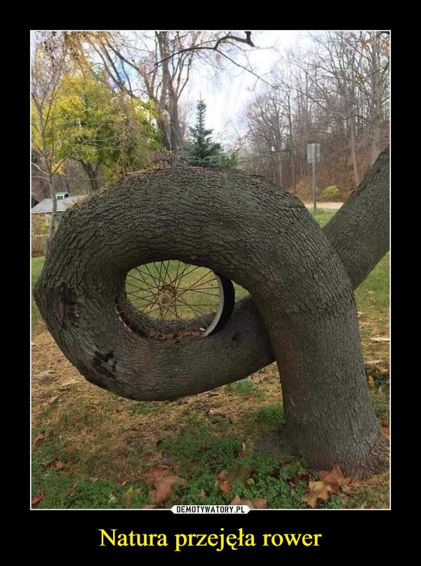 Natura przejęła rower –