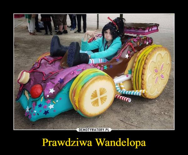 Prawdziwa Wandelopa –