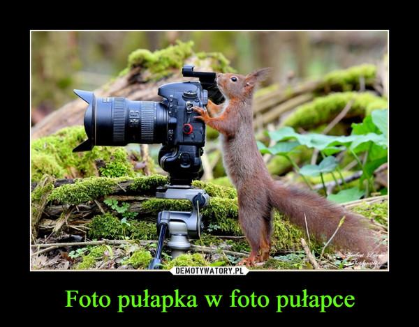 Foto pułapka w foto pułapce –