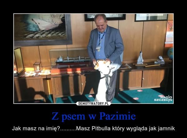 Z psem w Pazimie – Jak masz na imię?..........Masz Pitbulla który wygląda jak jamnik