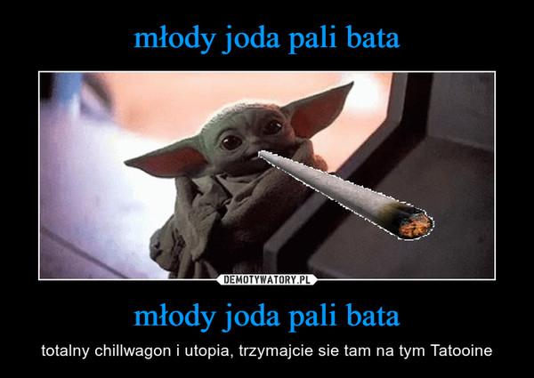 młody joda pali bata – totalny chillwagon i utopia, trzymajcie sie tam na tym Tatooine
