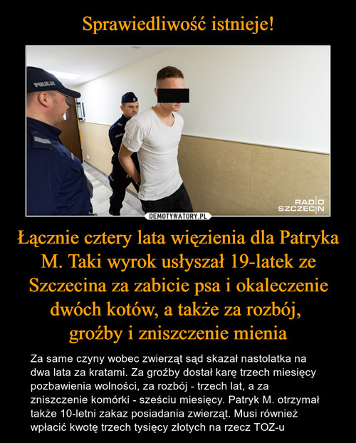 Sprawiedliwość istnieje! Łącznie cztery lata więzienia dla Patryka M. Taki wyrok usłyszał 19-latek ze Szczecina za zabicie psa i okaleczenie dwóch kotów, a także za rozbój,  groźby i zniszczenie mienia