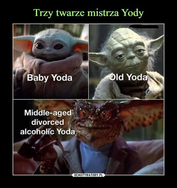 –  Old YodaBaby YodaMiddle-ageddivorcedalcoholic Yoda