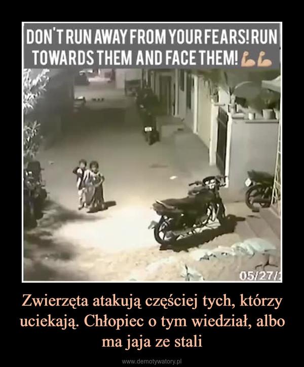 Zwierzęta atakują częściej tych, którzy uciekają. Chłopiec o tym wiedział, albo ma jaja ze stali –