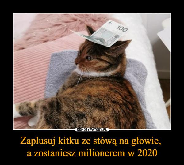 Zaplusuj kitku ze stówą na głowie, a zostaniesz milionerem w 2020 –