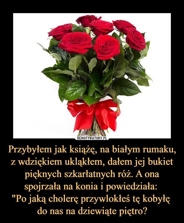 """Przybyłem jak książę, na białym rumaku, z wdziękiem ukląkłem, dałem jej bukiet pięknych szkarłatnych róż. A ona spojrzała na konia i powiedziała: """"Po jaką cholerę przywlokłeś tę kobyłę do nas na dziewiąte piętro? –"""