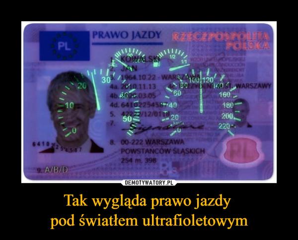 Tak wygląda prawo jazdy pod światłem ultrafioletowym –