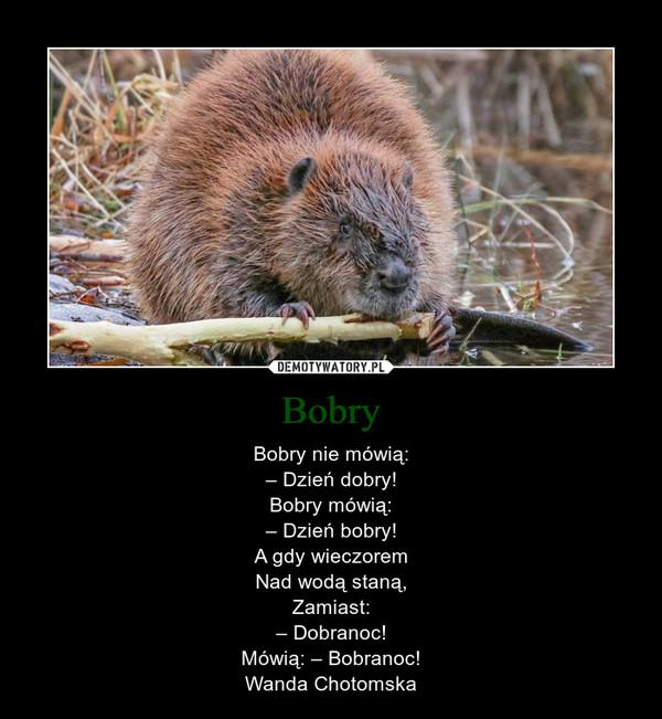 Bobry – Bobry nie mówią:– Dzień dobry!Bobry mówią:– Dzień bobry!A gdy wieczoremNad wodą staną,Zamiast:– Dobranoc!Mówią: – Bobranoc!Wanda Chotomska
