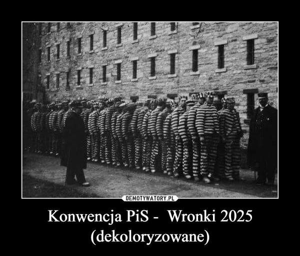 Konwencja PiS -  Wronki 2025 (dekoloryzowane) –