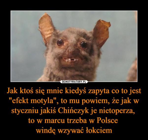 """Jak ktoś się mnie kiedyś zapyta co to jest """"efekt motyla"""", to mu powiem, że jak w styczniu jakiś Chińczyk je nietoperza, to w marcu trzeba w Polsce windę wzywać łokciem –"""