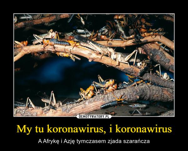My tu koronawirus, i koronawirus – A Afrykę i Azję tymczasem zjada szarańcza