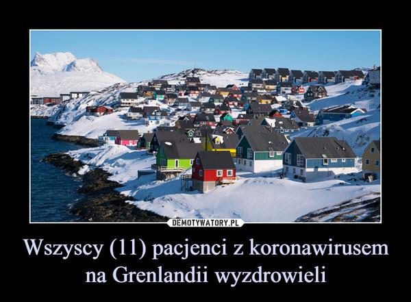Wszyscy (11) pacjenci z koronawirusem na Grenlandii wyzdrowieli –