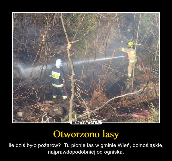 Otworzono lasy – Ile dziś było pożarów?  Tu płonie las w gminie Wleń, dolnośląskie, najprawdopodobniej od ogniska.