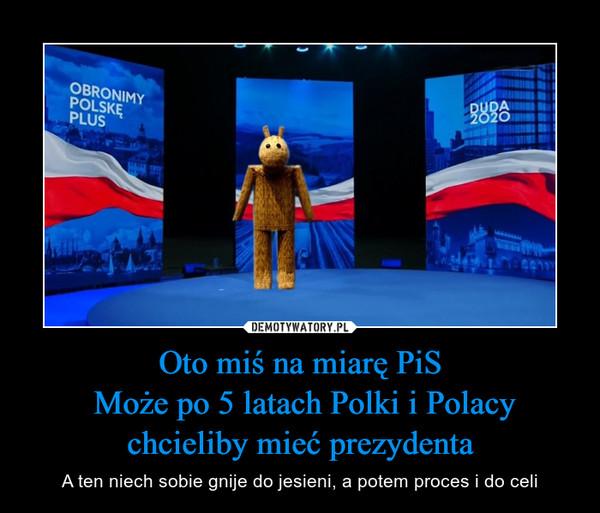 Oto miś na miarę PiS Może po 5 latach Polki i Polacy chcieliby mieć prezydenta – A ten niech sobie gnije do jesieni, a potem proces i do celi