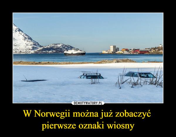 W Norwegii można już zobaczyć pierwsze oznaki wiosny –