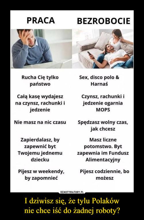 I dziwisz się, że tylu Polaków nie chce iść do żadnej roboty?