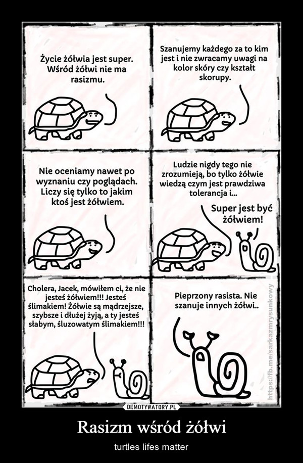 Rasizm wśród żółwi – turtles lifes matter