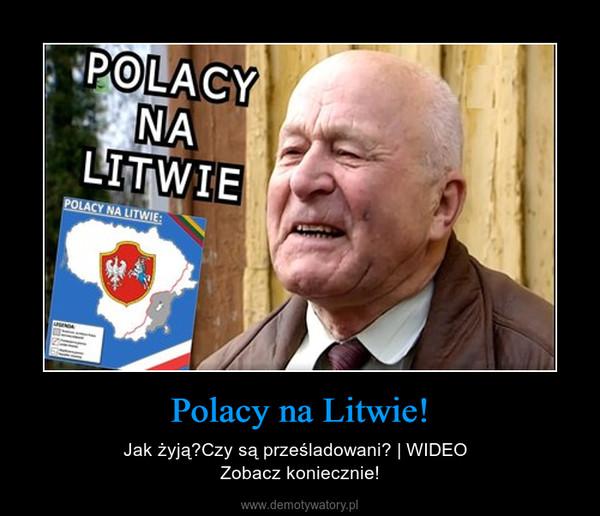 Polacy na Litwie! – Jak żyją?Czy są prześladowani? | WIDEO  Zobacz koniecznie!