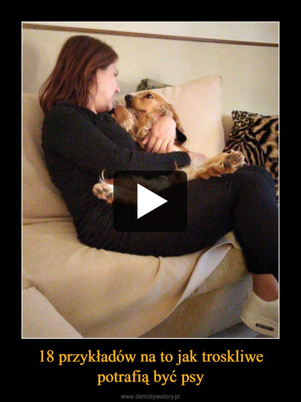 18 przykładów na to jak troskliwe potrafią być psy –