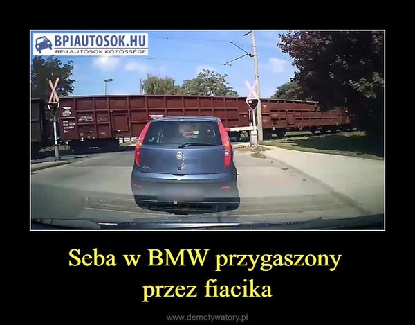 Seba w BMW przygaszony przez fiacika –