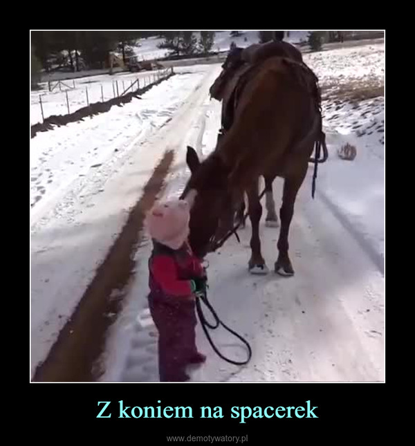 Z koniem na spacerek –