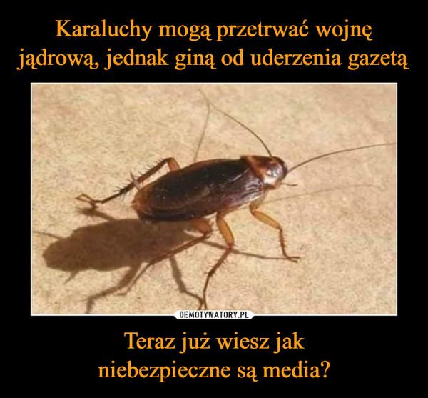 Teraz już wiesz jakniebezpieczne są media? –