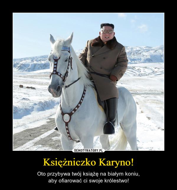 Księżniczko Karyno! – Oto przybywa twój książę na białym koniu,aby ofiarować ci swoje królestwo!