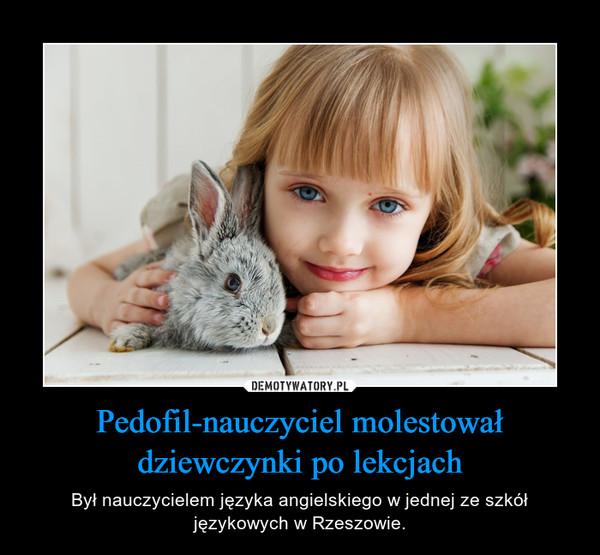 Pedofil-nauczyciel molestował dziewczynki po lekcjach – Był nauczycielem języka angielskiego w jednej ze szkół językowych w Rzeszowie.