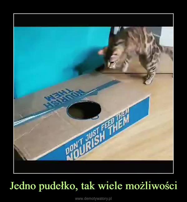 Jedno pudełko, tak wiele możliwości –