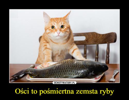 Ości to pośmiertna zemsta ryby
