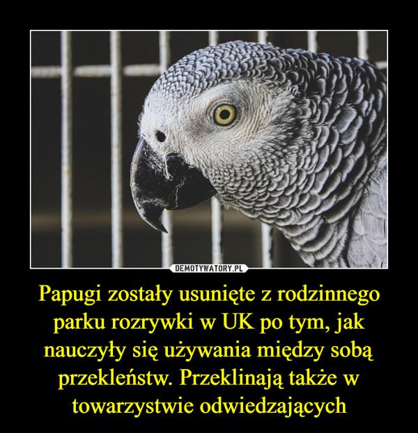 Papugi zostały usunięte z rodzinnego parku rozrywki w UK po tym, jak nauczyły się używania między sobą przekleństw. Przeklinają także w towarzystwie odwiedzających –