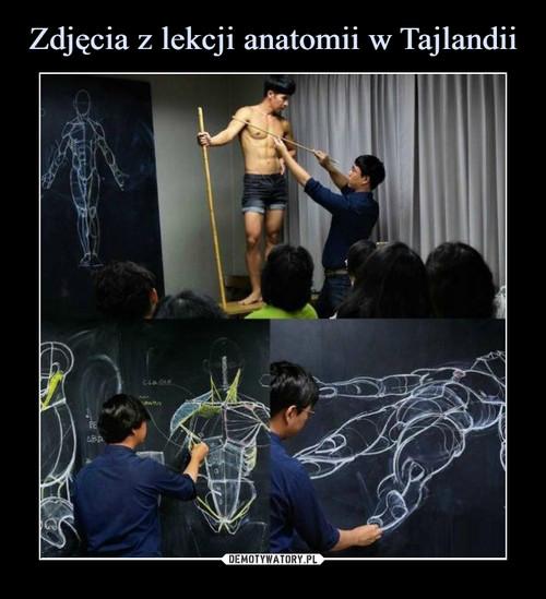 Zdjęcia z lekcji anatomii w Tajlandii