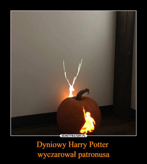 Dyniowy Harry Potter wyczarował patronusa –