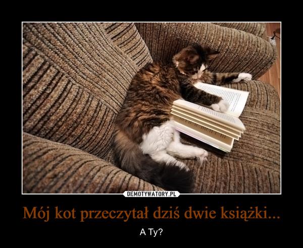 Mój kot przeczytał dziś dwie książki...