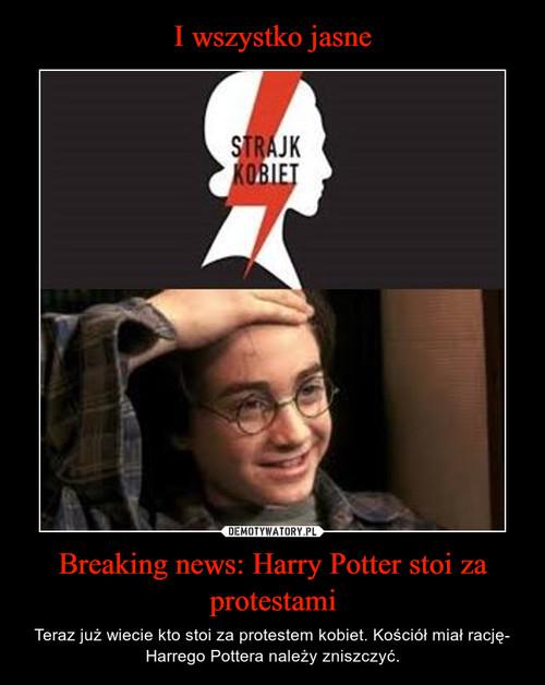 I wszystko jasne Breaking news: Harry Potter stoi za protestami