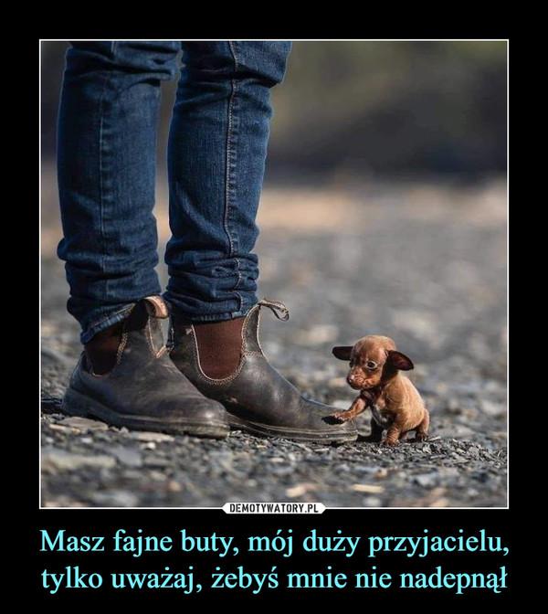 Masz fajne buty, mój duży przyjacielu, tylko uważaj, żebyś mnie nie nadepnął –