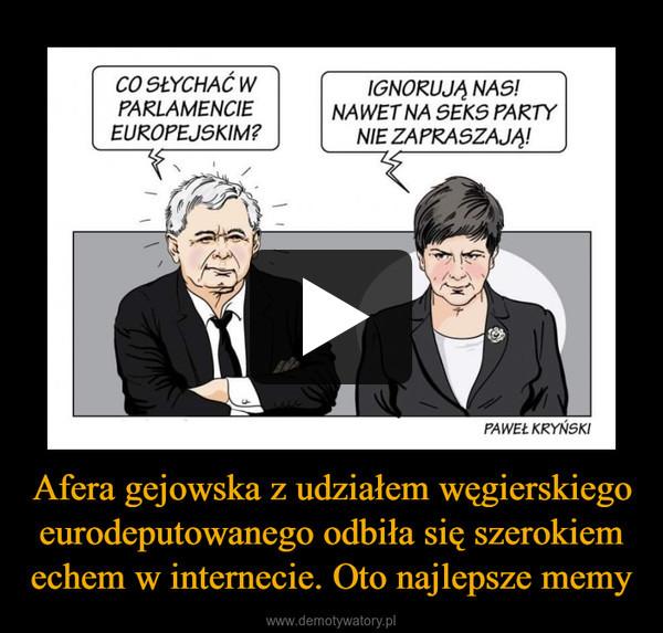 Afera gejowska z udziałem węgierskiego eurodeputowanego odbiła się szerokiem echem w internecie. Oto najlepsze memy –