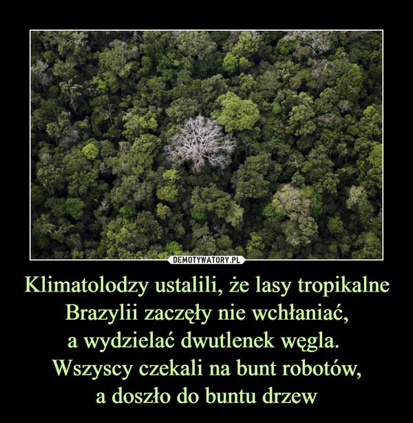 Klimatolodzy ustalili, że lasy tropikalne Brazylii zaczęły nie wchłaniać,a wydzielać dwutlenek węgla. Wszyscy czekali na bunt robotów,a doszło do buntu drzew –