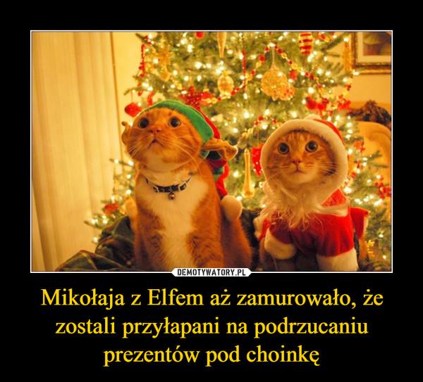 Mikołaja z Elfem aż zamurowało, że zostali przyłapani na podrzucaniu prezentów pod choinkę –