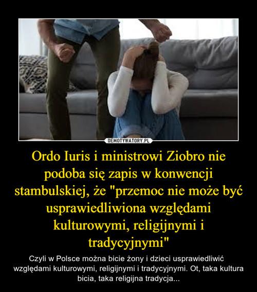 """Ordo Iuris i ministrowi Ziobro nie podoba się zapis w konwencji stambulskiej, że """"przemoc nie może być usprawiedliwiona względami kulturowymi, religijnymi i tradycyjnymi"""""""
