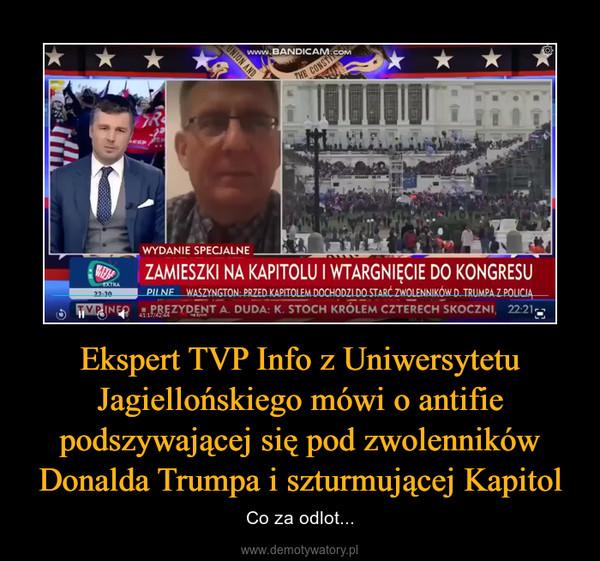 Ekspert TVP Info z Uniwersytetu Jagiellońskiego mówi o antifie podszywającej się pod zwolenników Donalda Trumpa i szturmującej Kapitol – Co za odlot...
